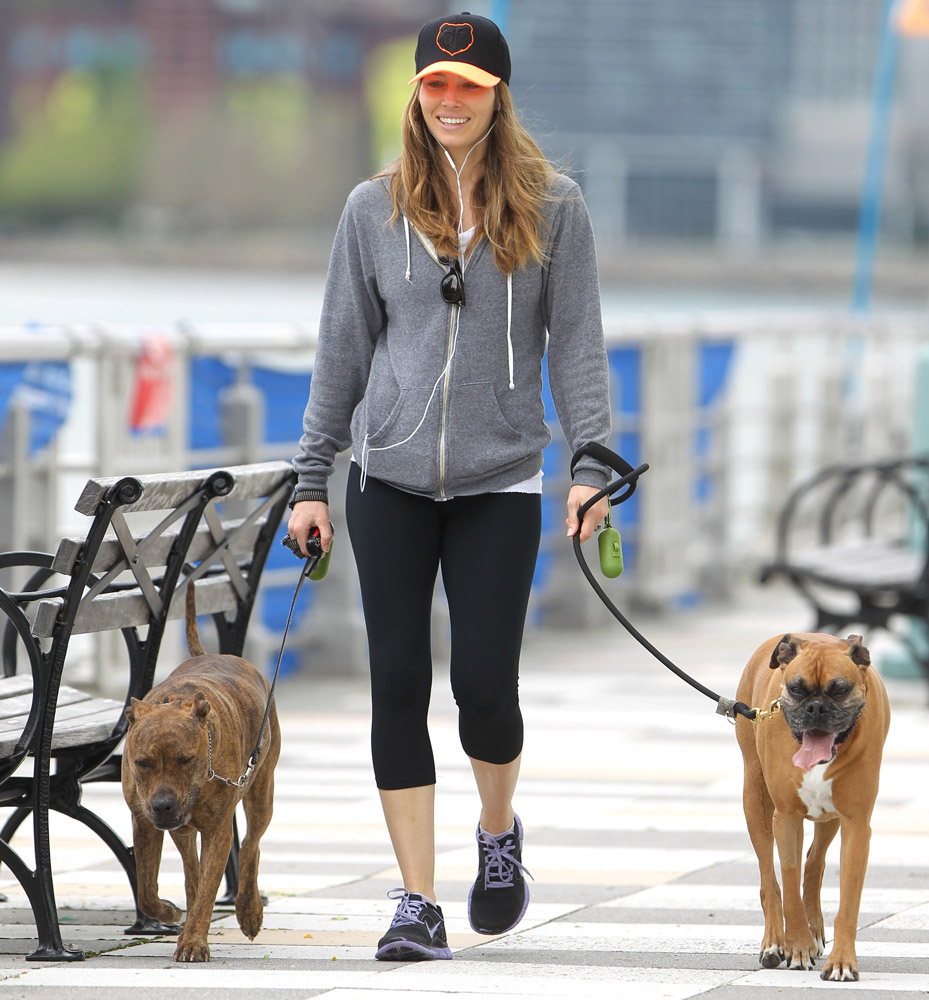 Jessica Biel dogs