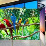 LG lanza su televisión OLED de 55 pulgadas