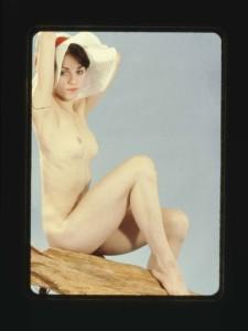 madonna-nude-portrait-auction-11