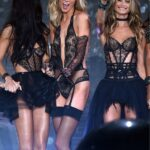 Desfile Victoria's Secret Fashion Show 2014