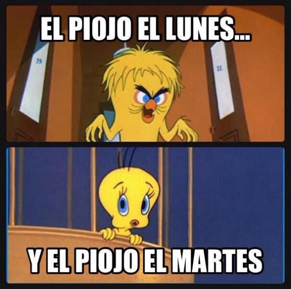 meme-adios-piojo11