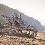 Craneo de dragon aparece en la playa